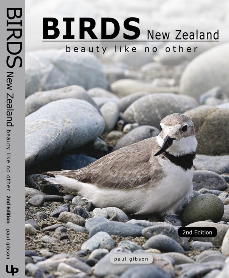 BIRDS-NZ-2nd-Edition-Case-768x934.jpg