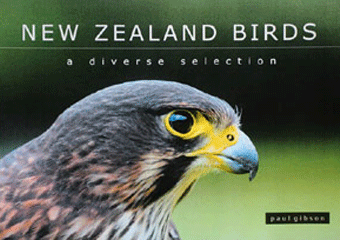 New-Zealand-Birds.gif